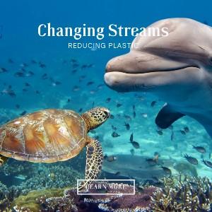 Changing-Streams-Ad-300.jpg
