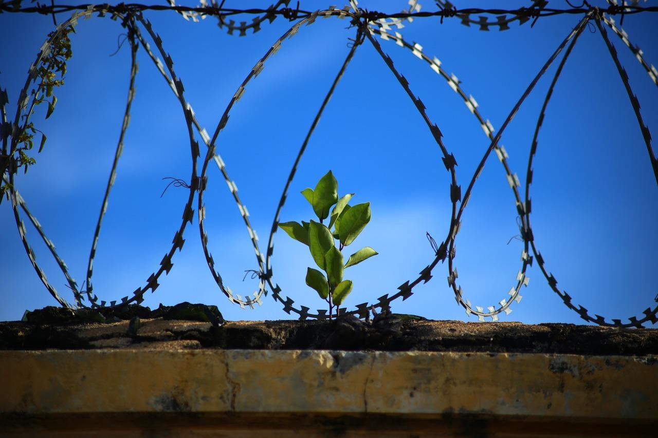 Inside Connections John Burton hope after prison