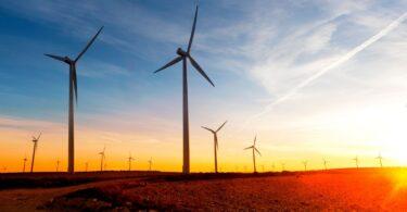 wind farm and solar